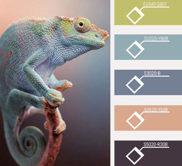 Nature-inspired<br/><span>paint palettes</span>